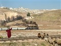 Shepherdess clears the tracks of Hedjaz Railway, Near Amman, Jordan