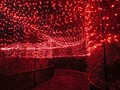 Christmas Pathway