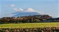 Mt Taranaki from Hawera