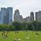 Central Park,NY