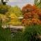 Japanese Garden at Lewis Ginter Botanical Gardens