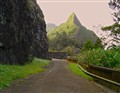 Old Pali Road -Windward Oahu, Hawaii
