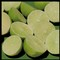 Persina Limes