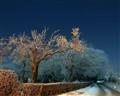 Lincolnshire Winter