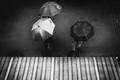 The Umbrellas of Meersburg