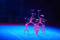 Peking Acrobats Show