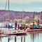 Eagle Harbor #3