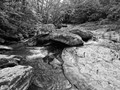 Black and white landscape photo of Friend's Creek in northern Maryland.  This is a popular and scenic trout stream.