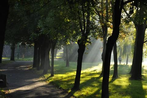 Jezioro Nowogardzkie o Poranku [Październik 10] 024b