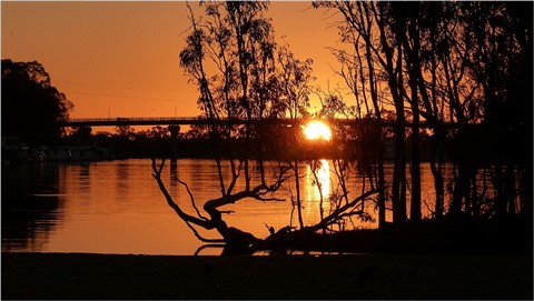 Bridge at Berri on the River Murray Sth Aust