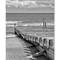 Southwold-Groynes-1-B&W