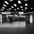 RER_Web
