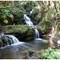 Onomea Falls 23