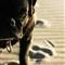 dogsonbeach2005-21