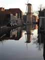 Molen reflection