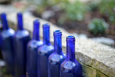 blue bottles (1 of 1)