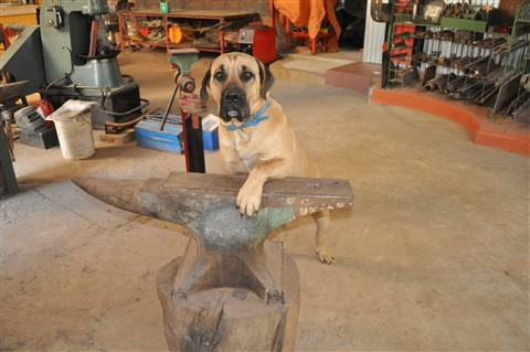 Barnaby. Custodian of the anvil.