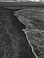 Captiva Shore