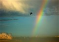 Flying Through a Rainbow