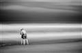 untitled shoot-3511