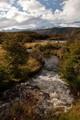 Autumn Stream, Tierra del Fuego