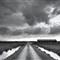 Farm Track, Braunton