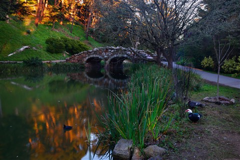 Stone Bridge at Stow Lake