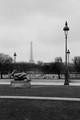 Paris - s(f)og