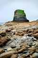 Sea stack at low tide, Charlestown