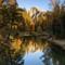 445A0695-Half Dome Fall