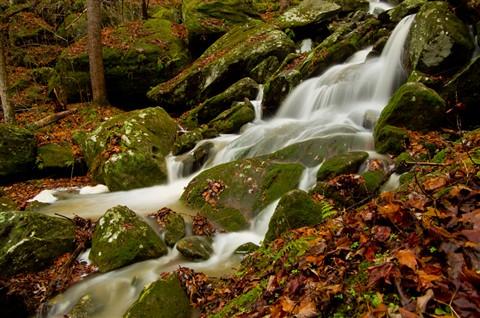 Anglin Falls -01 015_P_edited-1