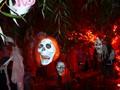 Zinda Family Halloween