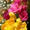 flowerpower05