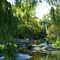 Edward Garden