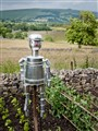 Castleton Tin Man