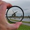 Amsterdam & Keukenhof 133