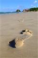 Sandy Impression