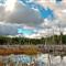 Pano-W.H.Pond-Trail-04
