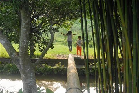 Sheung Shui country farm
