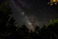 A Plethora of Stars