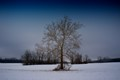 Very cold snowy day in Xenia, OH