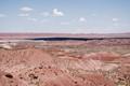 Petrified Forest - Arizona