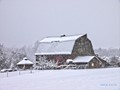 Winter barn.