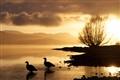 Patagonian sunrise