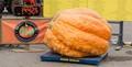 Largest Pumpkin in Ontario 2013