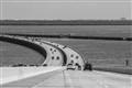 Annia's Bridge Tampa