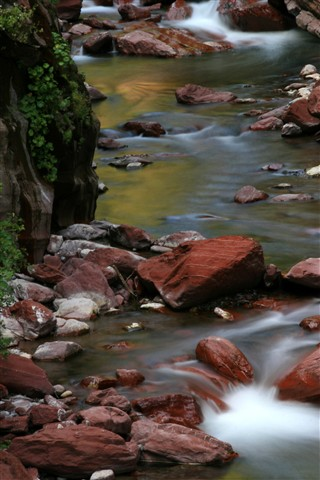 A stream with red stones