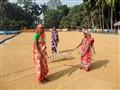 Drying Rice Paddy! - Dinajpur, Bangladesh