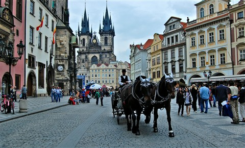 2008-06-12 PS Czech Republic Prague Horses Cart