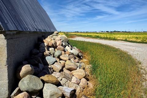 Field Stones